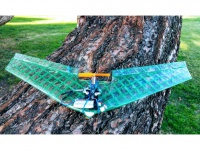 Micro Flying Wing