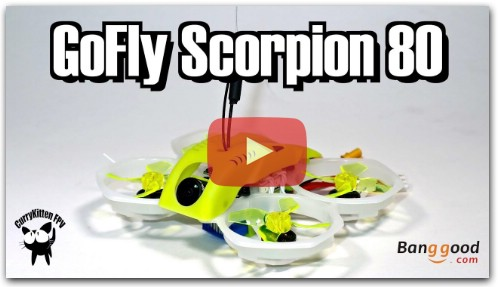 GoFly Scorpion 80 2S whoop review, supplied by Banggood