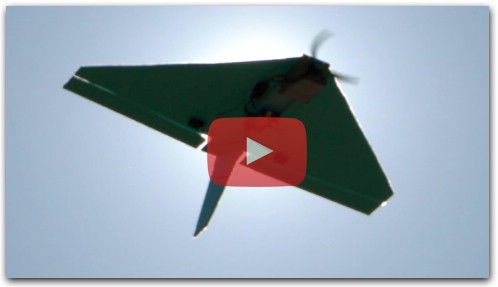 Delta wing 10 mins to build stunt flying DIY RC airplane