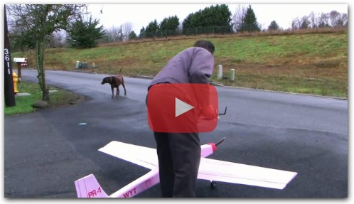 Foamy scratch built pink insulation RC electric airplane