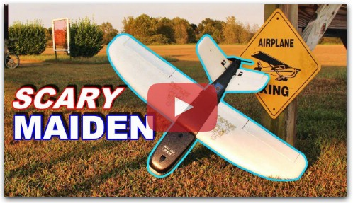 Will this RC Plane Fly With NO BRAIN?!?!?