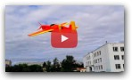 Sloyka 3D Crash DIY RC Plane
