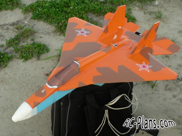 http://rc-plans.com/images/plans/pak-fa-t50-1.jpg