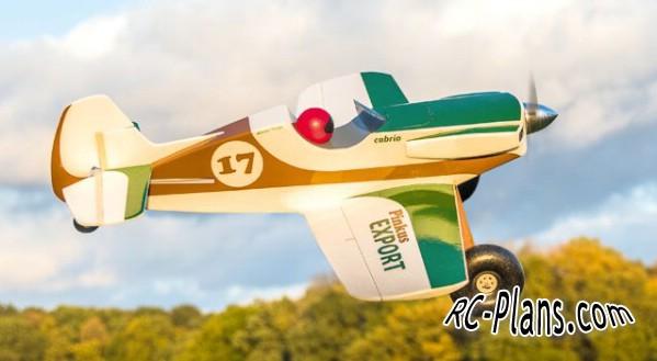 Free plans for balsa rc airplane Pinkus Export