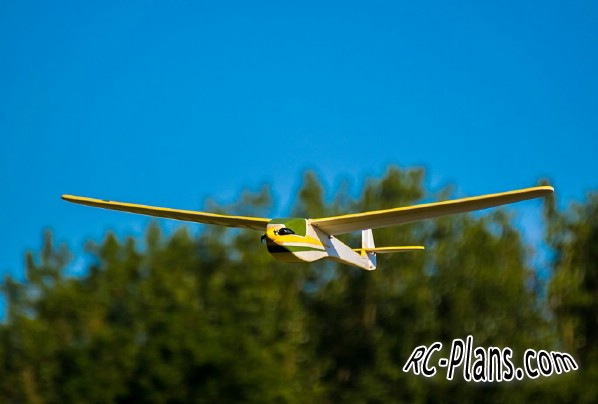 plans of rc model - glider Raus
